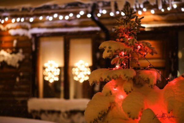 PAUL AUSTER: Auggie Wren karácsonya